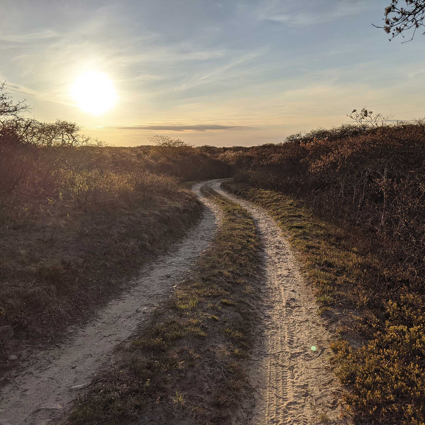 Winter Walks on Cape Cod and the Islands